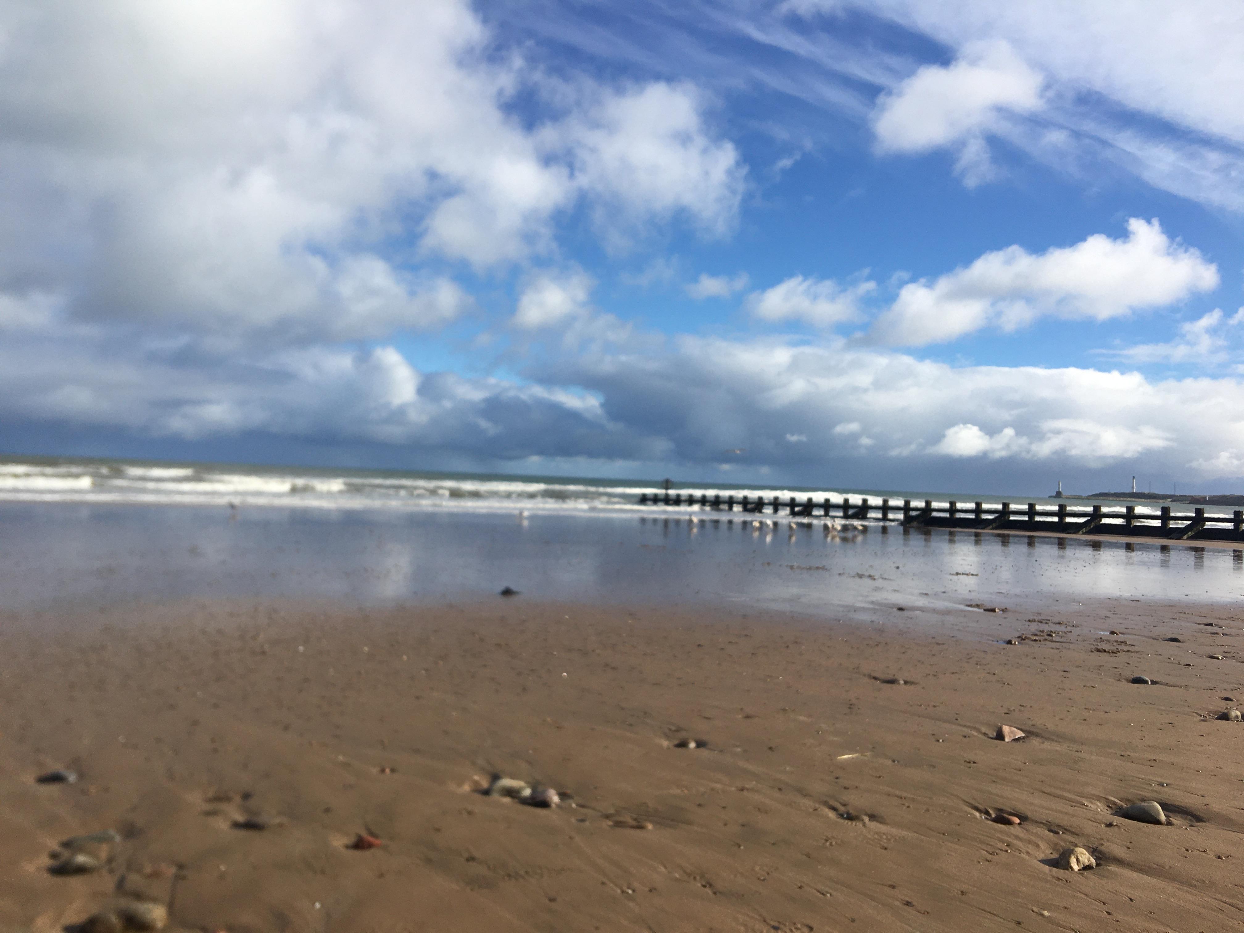 感受一下苏格兰的海边和草地~