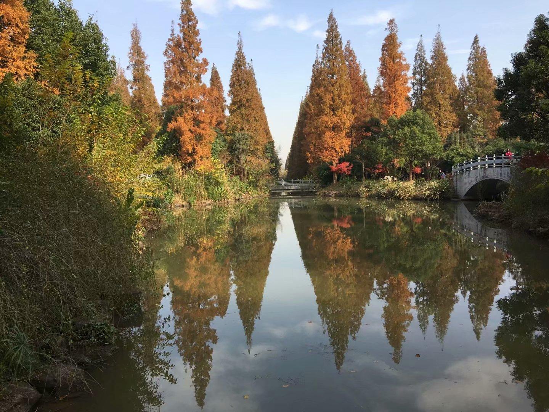 上海崇明东平国家公园